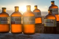 Brew Dr Kombucha: Revenues on course to reach $11million in 2016, says founder Matt Thomas