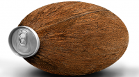 Consumers on canvassed by Ball Packaging and Dohler liked a coconut-shaped drinks can with a textured surface...
