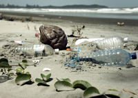 Waste PET bottles on a beach in Malaysia (Picture Credit: epSos.de)